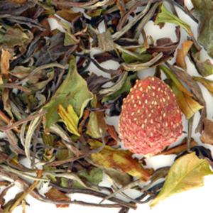 Strawberry White Tea from TeaGschwendner