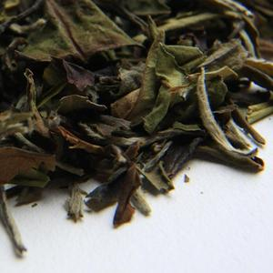 White Mu Dan Peony from Earthbound Tea