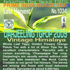 Darjeeling Vintage Himalaya TGFOP from TeaFountain