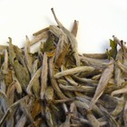 Yinzhen Bai Hao (Silver Needle) from In Pursuit of Tea