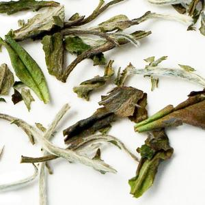 White Peony from Zhi Tea