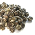 Jasmine Pearls from New Mexico Tea Company