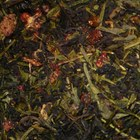 Formosa oolong / berry witch from Kua zelenog aja