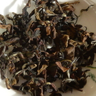 Oriental Beauty Bai Hao Oolong Superior Grade from Life In Teacup