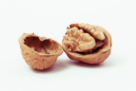 Walnut Producing Countries
