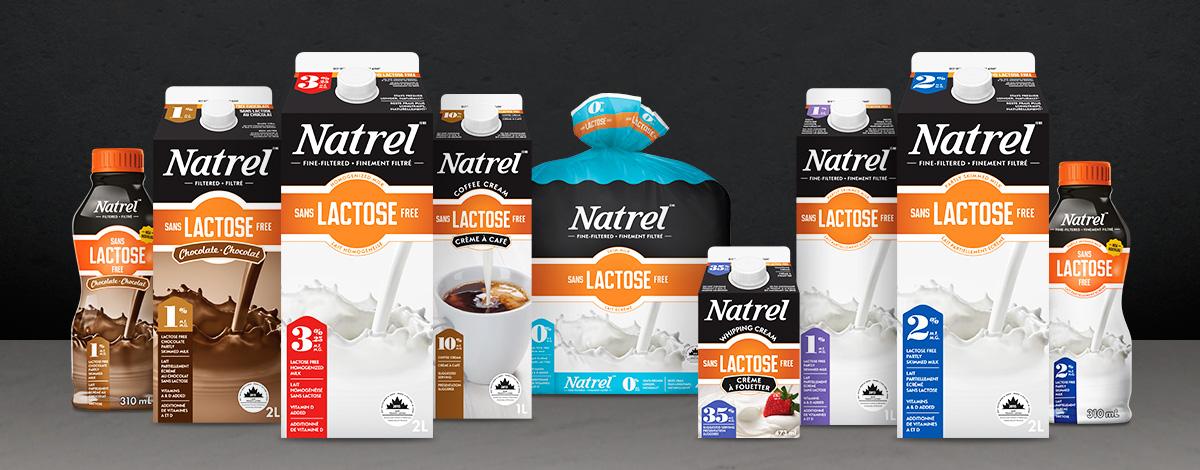 natrel sans lactose au chocolat 1 emporter natrel. Black Bedroom Furniture Sets. Home Design Ideas