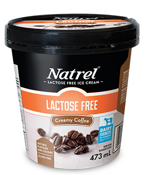 creamy coffee lactose free ice cream