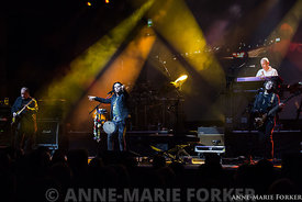 Marillion_-_Cambridge_-_AMForker-9980