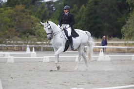SI_Festival_of_Dressage_300115_Level_6_NCF_0175