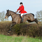The Cottesmore Hunt visit the Fitzwilliam at Morborne photos