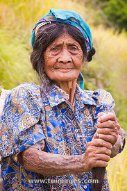natives woman with tattoo, philippines kalinga tribes in mountain province.