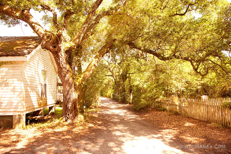 OCRACOKE ISLAND VILLAGE OUTER BANKS NORTH CAROLINA