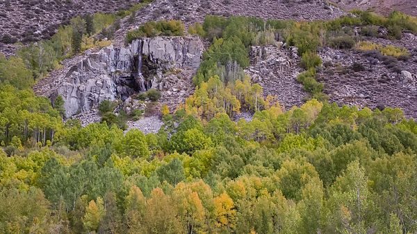 Medium Shot: Green & Golden Trees Surround A Distant Waterfall