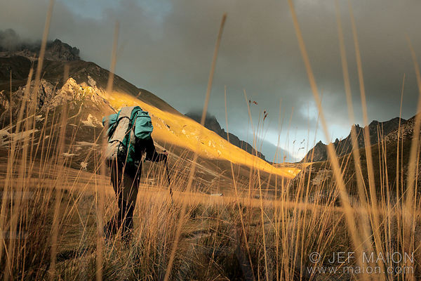 Hiker in high grass