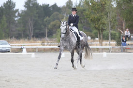 SI_Festival_of_Dressage_310115_Level_6_7_MFS_0843