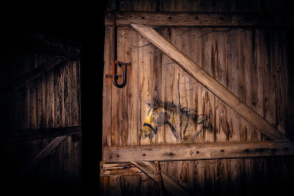 HORSE PAINTED ON BARN DOOR BY GERMAN WWI SOLDIER