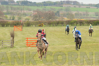 Balcormo Point-to-Point 2017 photos