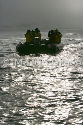 Polar tourists exploring in a Zodiac, silhouetted against the sunlight, Albert I Land, Spitsbergen, Svalbard