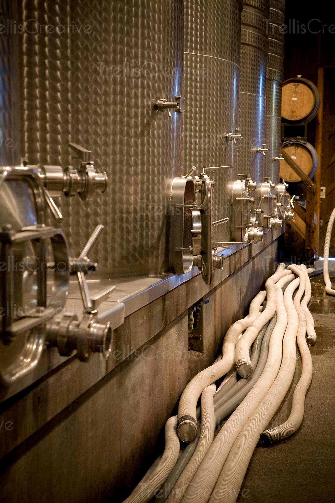 A view of a winery production cellar
