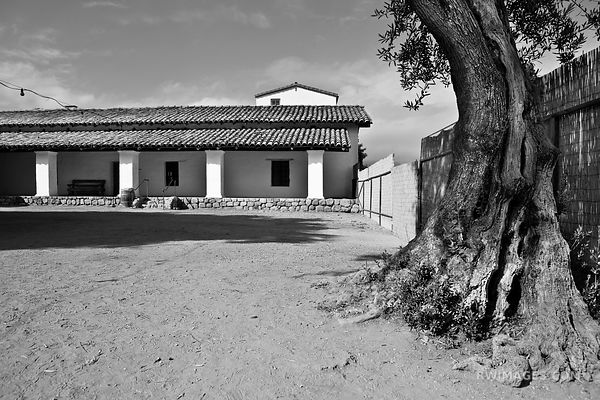 HISTORIC SANTA BARBARA ARCHITECTURE BEACH BLACK AND WHITE