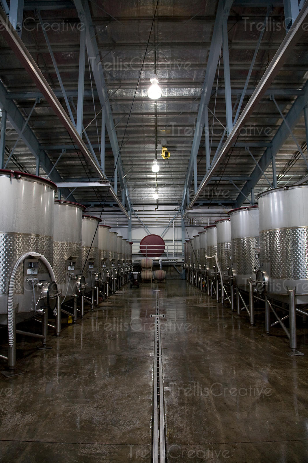 A winery fermentation cellar