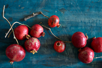 Pomegranate_0276