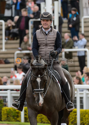 Dressage Photography photos