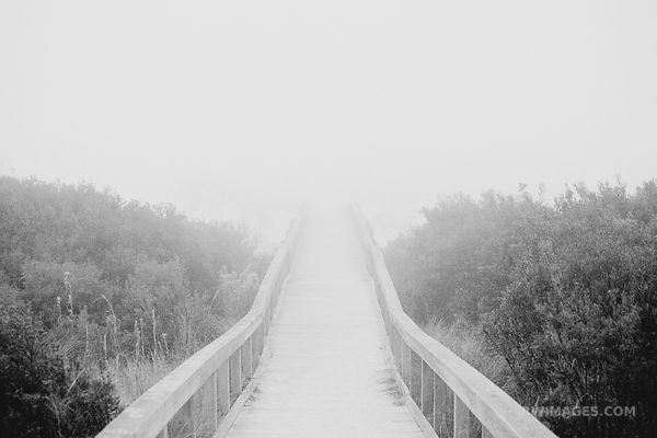SEACAMP BOARDWALK FOGGY MORNING CUMBERLAND ISLAND GEORGIA BLACK AND WHITE