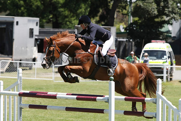 Ashburton SJ 1* Show photos