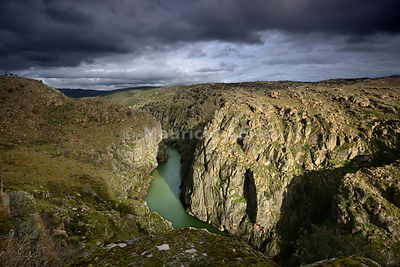 The river Douro crossing the wild and rocky gorges of the International Douro Nature Park, between Spain and Portugal. Trás-os-Montes, Portugal