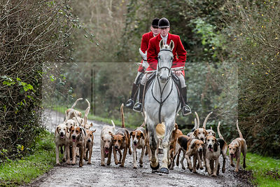 White Rose Farm Meet, Portman Hunt photos