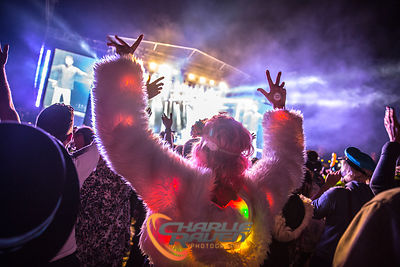 Bestival 2015 photos