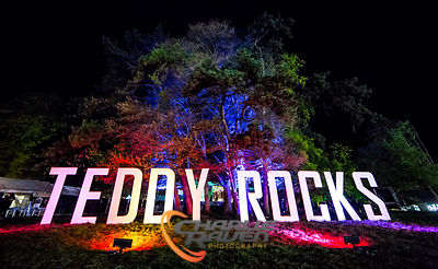 Teddy Rocks 2017 photos
