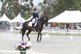 SI_Festival_of_Dressage_310115_Level_6_7_MFS_0636