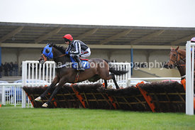 The BHE & ST Handicap Hurdle Race