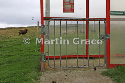 A gated bus shelter - to keep sheep out or perhaps a council-sponsored sheep pen? Yell, Shetland