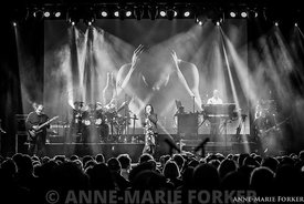 Marillion_-_Cambridge_-_AMForker-9873