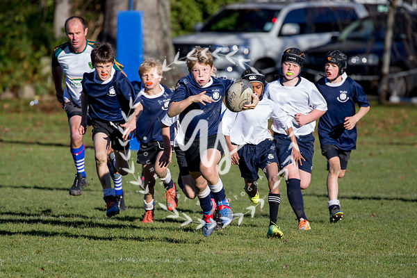 Colts Rugby photos