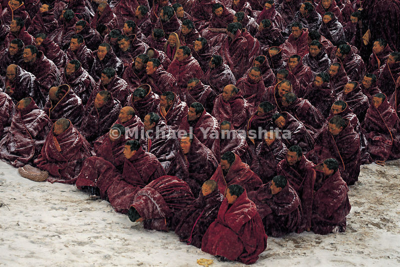 Heedless of the blizzard, the monks of Labrang await the start of morning prayers.