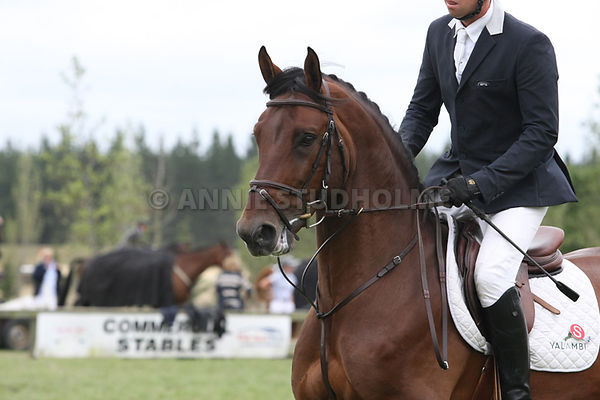 Canterbury Championship 3* Show photos