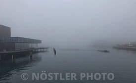 Poor visibility for the Copenhagen Canal tours