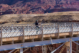 Researcher Using Antenna to Track California Condors at Navajo Bridge