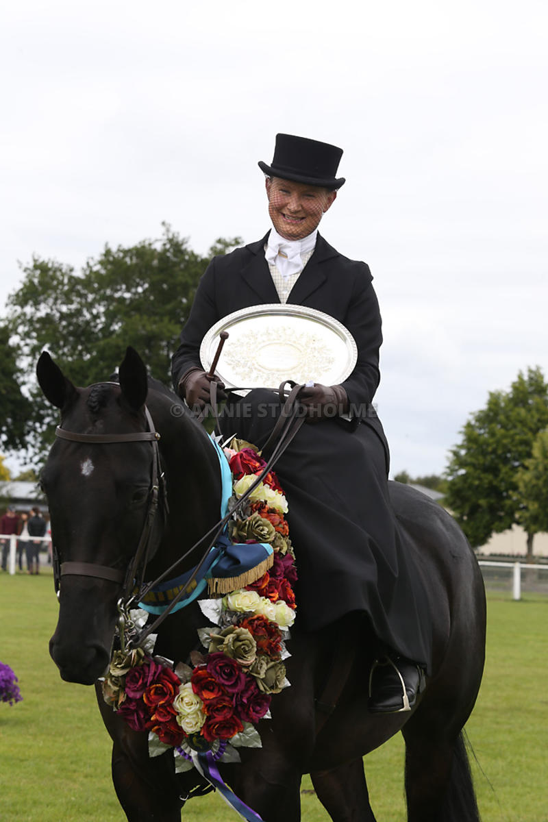 Side Saddle photos