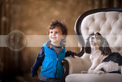 cute little boy with spaniel dog sitting on chair outdoors