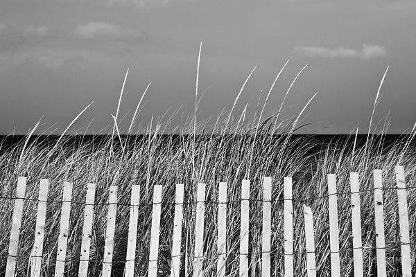 BEACH FENCE CAPE COD MASSACHUSETTS BLACK AND WHITE