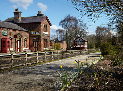 old station at Hadlow Road with daffodils