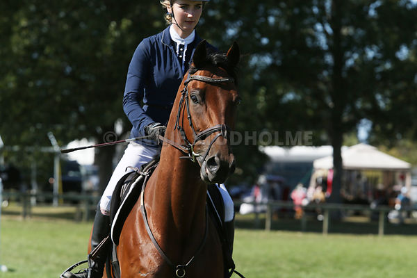 1.10m Horse Champ photos