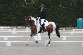 Canty_Dressage_Champs_071214_003