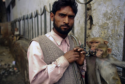 India - New Delhi - A man and his performing monkeys