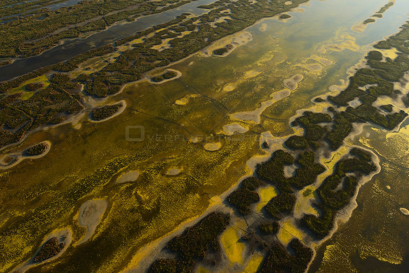 Aerial view over the Danube delta, abstract patterns of water and ground, Danube delta rewilding area, Romania, June 2012